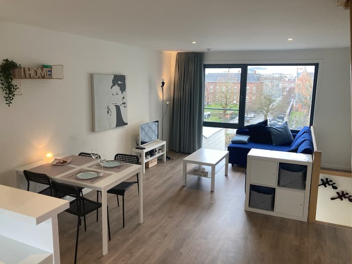 Fully renovated duplex apartment in downtown Ghent