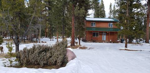 Seeley Lake Vacation Home