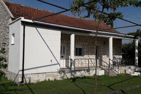 Apartman Rodin