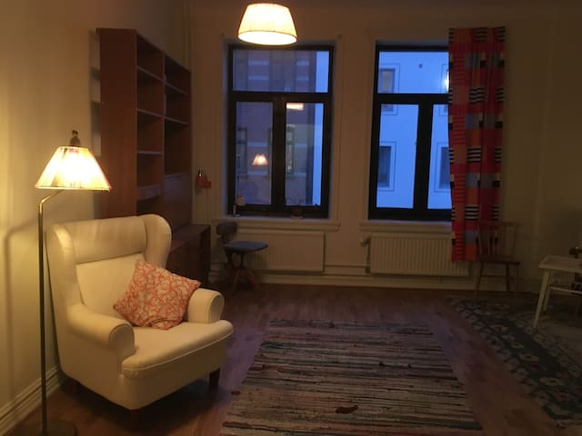 Room in cosy central apartment