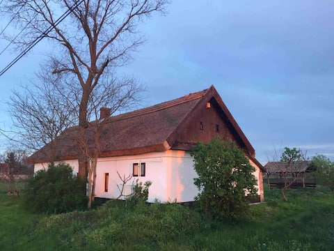 Charming loam house with thatched roof in the Puszta