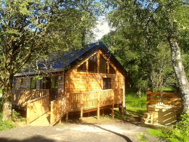 Bluebell Cabin - Argyll and Bute - Chalet