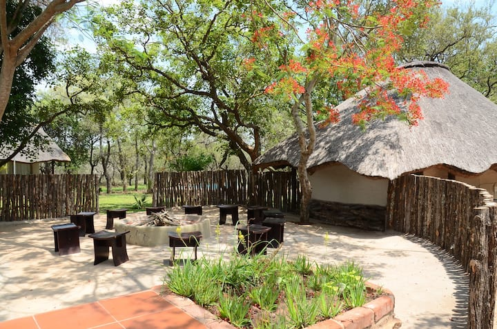 Your home in the African Bush - Family Chalet
