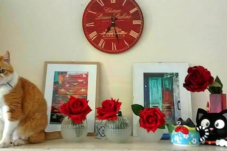 Cozy,  quiet & cats! Edge of city centre. - Modena - Bed & Breakfast