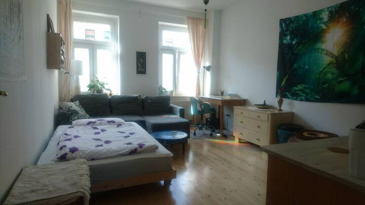 2 rooms with 2 beds in Leipzig center/west