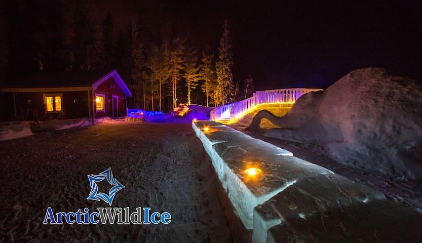 Arctic Wild Ice Ranua