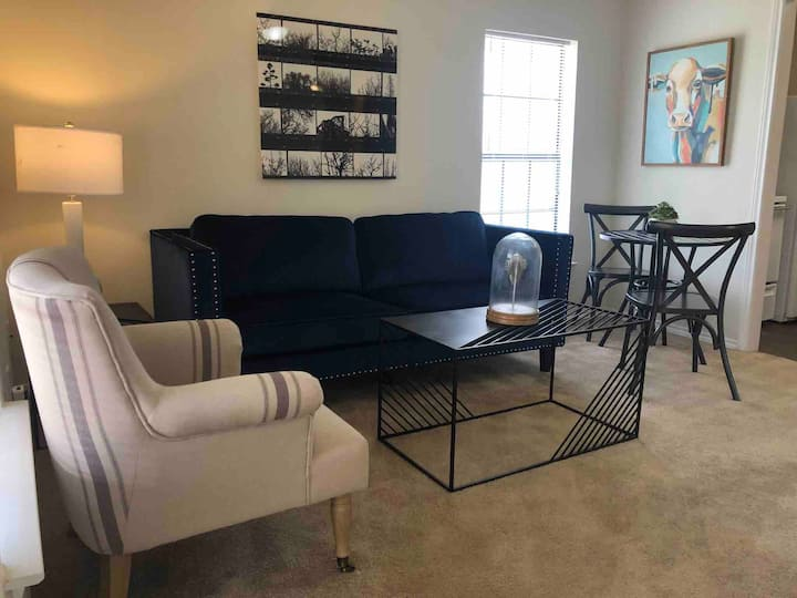 2 Bedroom Apartment - Close to UNT and TWU