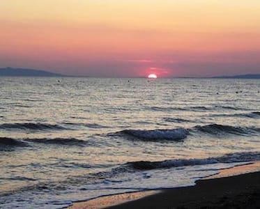 Playa Tarquinia - Lido di Tarquinia - Huoneisto