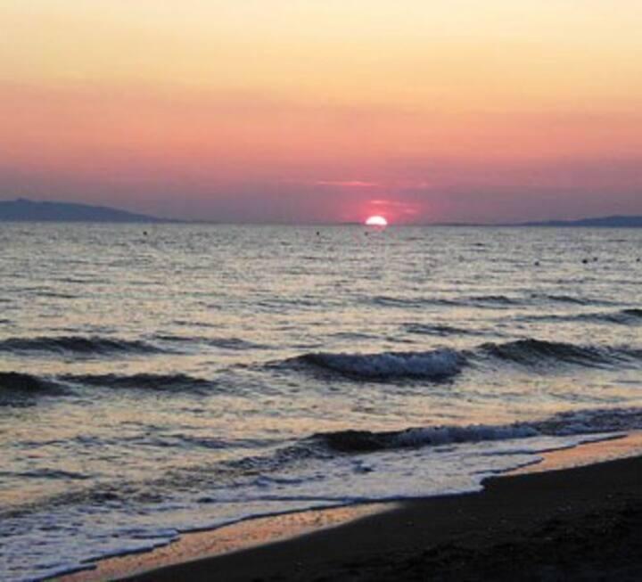 Playa Tarquinia