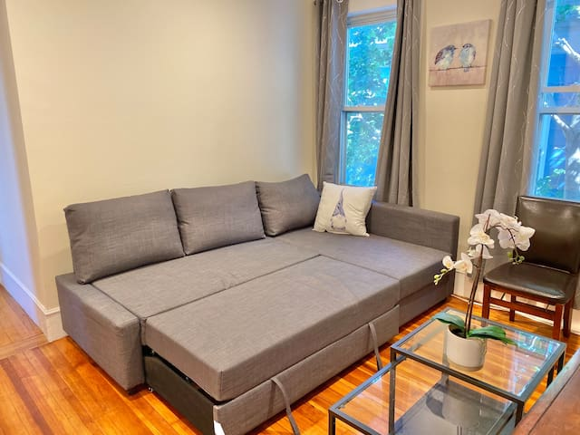Queen-sized pull-out couch