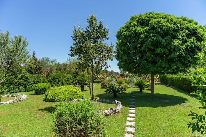 Il Grillo e la Cicala - appartamento mare e natura - Poggiardo - Flat