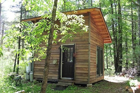 Tiny Off Grid Home in the Woods