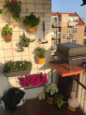 Charming apartment in the heart of Aarhus