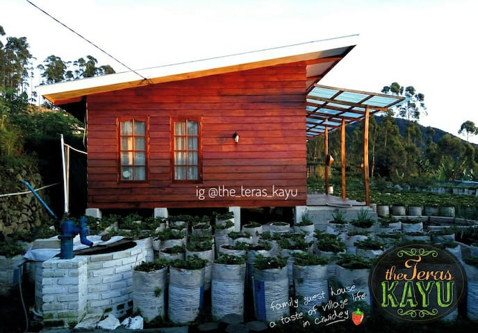 the Teras Kayu - family guest house in ciwidey