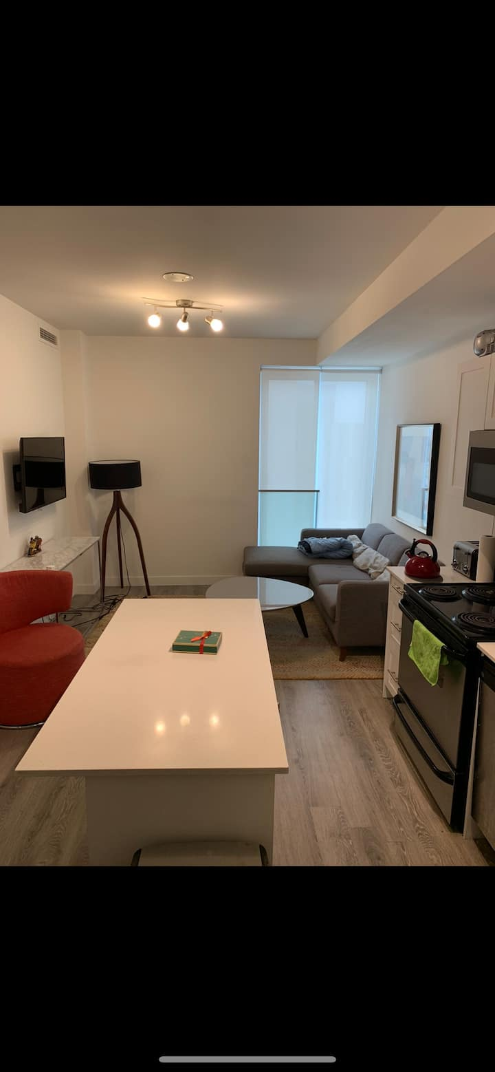 Beautiful Cozy Luxury Condo Downtown Oshawa