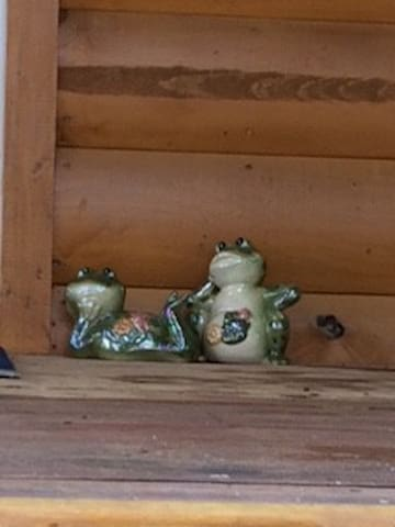 A couple of frogs relaxing on the porch.