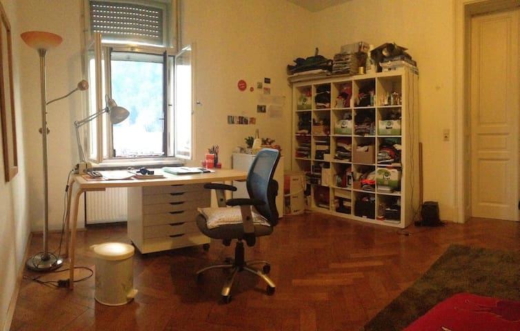 Spacious room in the city center - Graz - Apartment