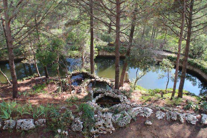 La casa dels Llacs II - Girona