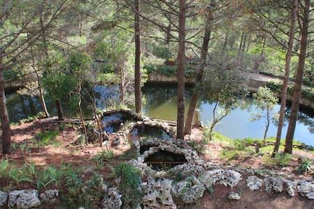 La casa dels Llacs II - Girona - 단독주택