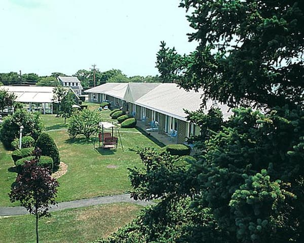 Cape Cod - West Yarmouth  August 10-17