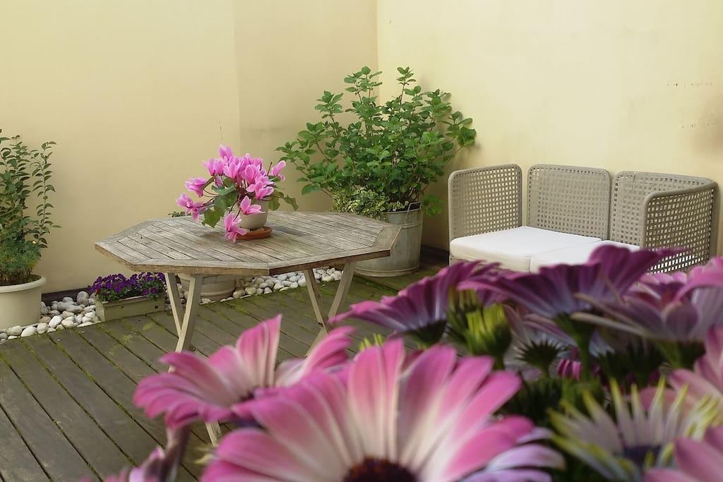Il giardino nel cuore di cremona appartamenti in affitto for Affitto arredato cremona privato