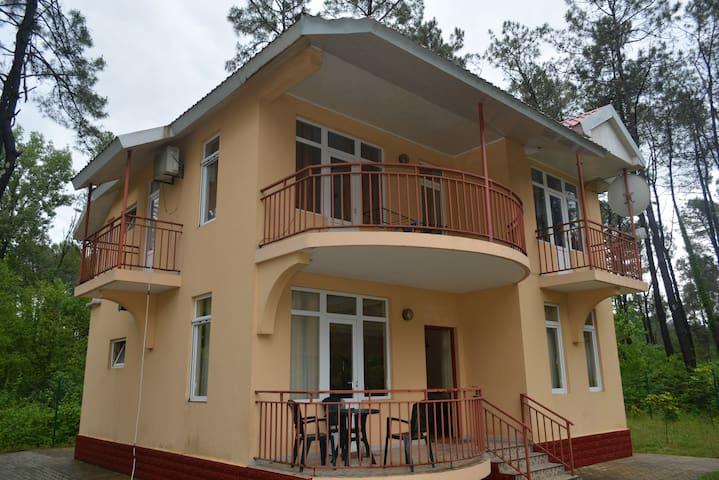 Частный Дом в Шекветили