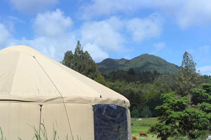 Mountain View Eco Yurt (Self Contained) - Waikino - Tenda