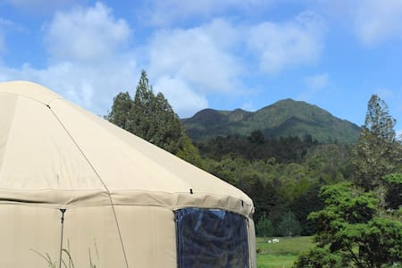 Mountain View Eco Yurt (Self Contained) - Waikino