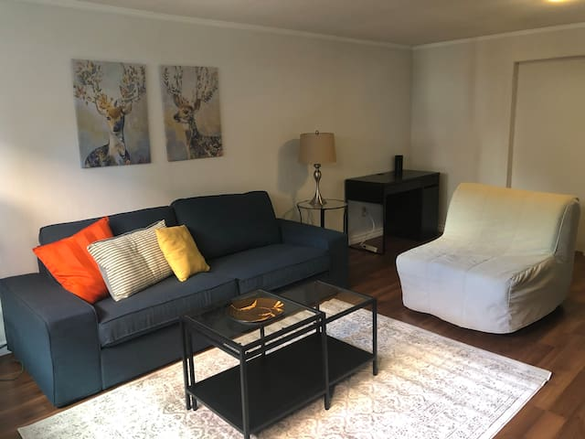 Spacious 1 Bedroom Basement Apt
