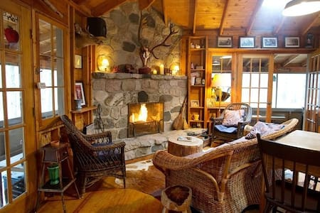 Charming cabin in the woods - Fennville