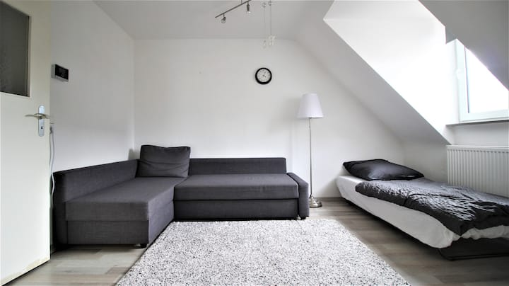 Elegant and bright apartment near the station