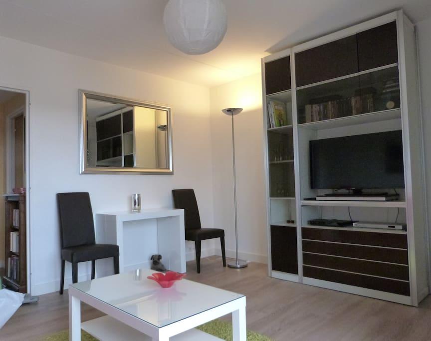 Lumineux appartement de 2 chambres appartements en - Appartement spacieux lumineux en suede ...