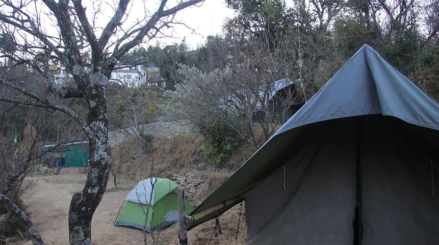 Camp Greens Mukteshwar