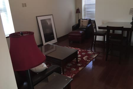 Professional Apartment near BGH and BU - 宾汉姆顿(Binghamton) - 公寓