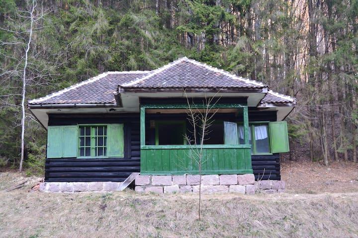 Bear's Den - Bățanii Mici - Villa