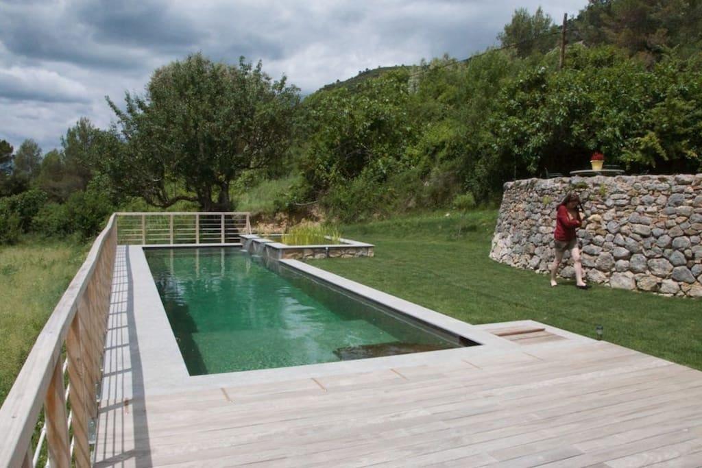 Terrasse et gazon piscine