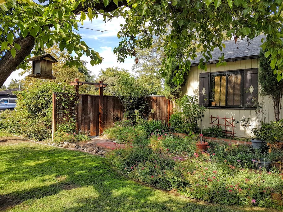 Your private entrance through the side gate and garden