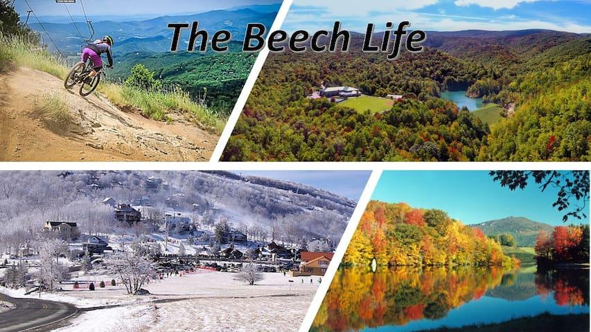Life is a Beech  l  900sf Mtn Condo