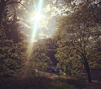 Sunny, basic family apartment - Turku