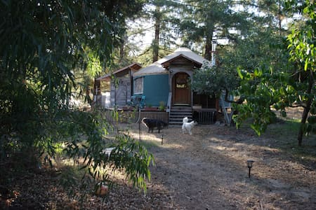 Eco-Yurt at Sweetbriar Farm - Sebastopol - Yourte