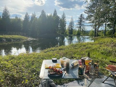 Lakeside Retreat- Camper van/ camping pitch