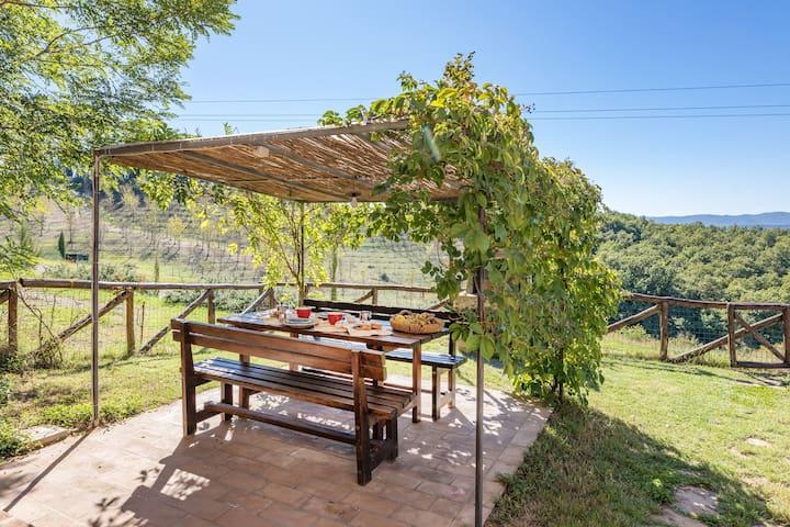 Private garden of apartment Mela - Giardino privato dell'app. Mela