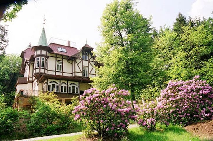 Art Noveau Villa, close to nature. - Luftkurort Lückendorf - Villa