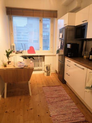 One bedroom apartment near city center