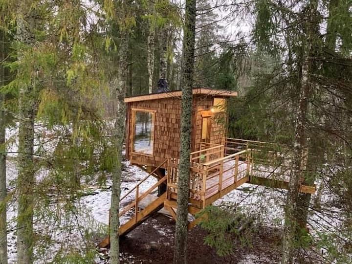 Tiigrisilma Treehouse - something mystical