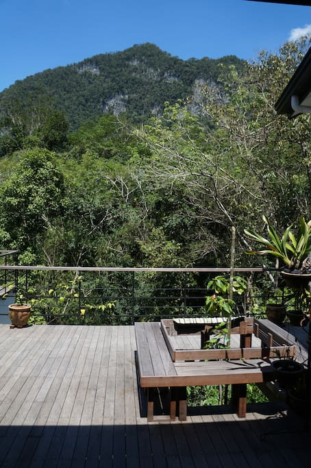 Mountain and Rainforest views from the Property