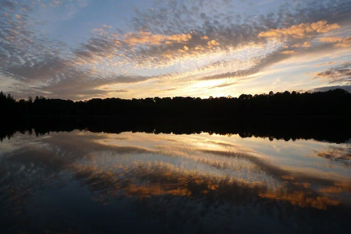 Private Maple Canopy Campsite @ Secret Sunset Lake