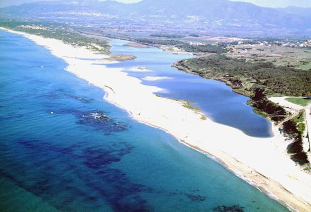 valledoria beach dunes system and pine eucalipto forest where Amelia's fortunate location