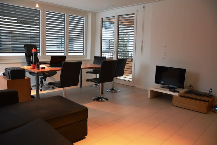 Nice apartment close to Basel - Allschwil - Condominium