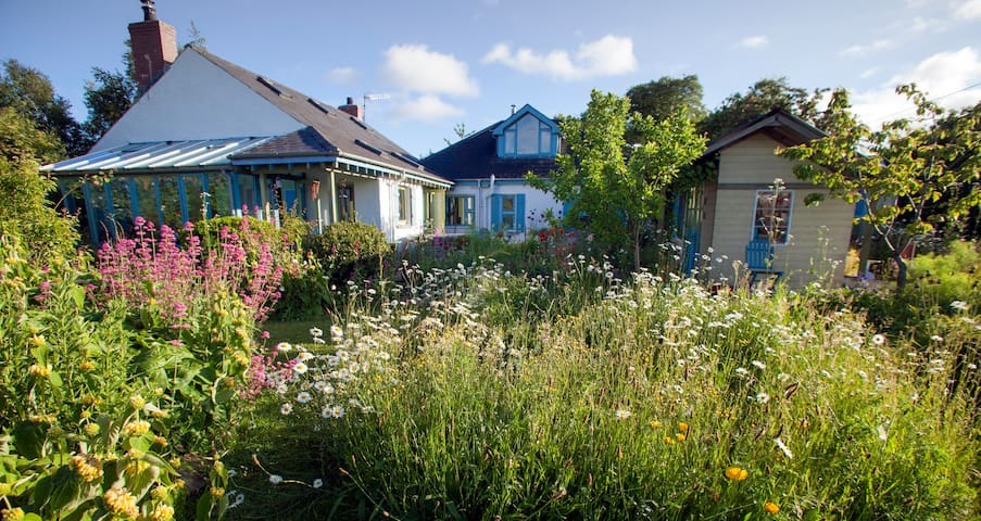 An art and garden lover's hideaway - Killyleagh - Hus
